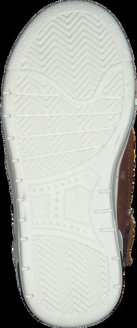 Cognacfarbene PINOCCHIO Sneaker P1877 - large