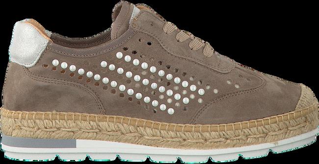 Taupe KANNA Sneaker KV8185 - large