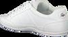 Weiße LACOSTE Sneaker CHAYMON BL  - small