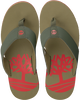 green TIMBERLAND shoe WILD DUNES SYNTH M THO  - small