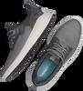Graue TIMBERLAND Sneaker low BRADSTREET ULTRA SPORT OXFORD  - small