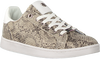 Taupe MEXX Sneaker low EEKE  - small