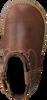 Cognacfarbene BUNNIES JR Stiefeletten BENTE BLIKSEM - small