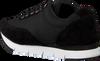 Schwarze CALVIN KLEIN Sneaker TABATA TABATA - small