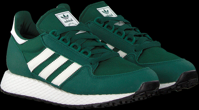 Forest Grove Sneaker Omoda Grüne J Adidas rBWCdxoe