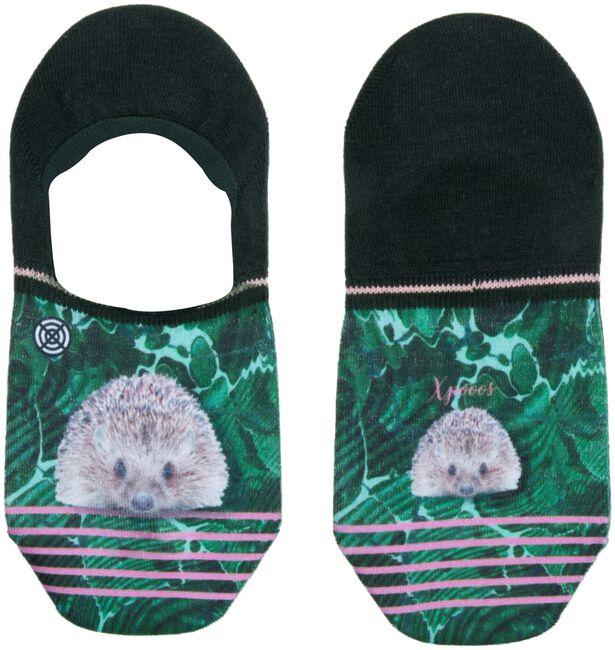 Mehrfarbige/Bunte XPOOOS Socken HEDGEHOG INVISIBLE  - large