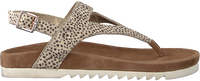 Beige MARUTI Sandalen BEAR HAIRON - medium