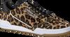 Schwarze ADIDAS Sneaker CONTINENTAL 80 W  - small
