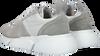 Graue COPENHAGEN STUDIOS Sneaker low CPH540  - small