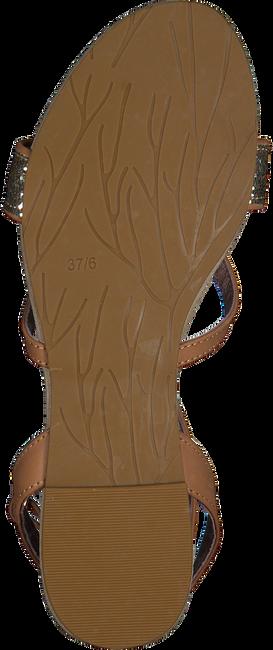 cognac MALUO shoe 5095  - large