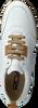 Weiße ROBERTO D'ANGELO Sneaker low MOTO  - small