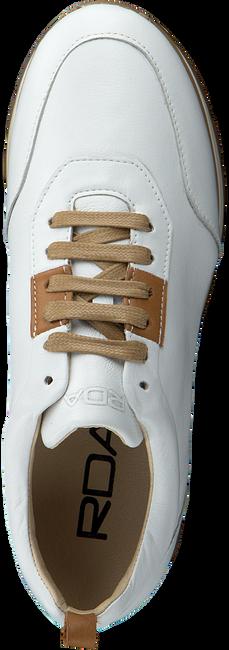 Weiße ROBERTO D'ANGELO Sneaker low MOTO  - large