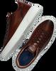 Cognacfarbene GIORGIO Sneaker low 980116  - small