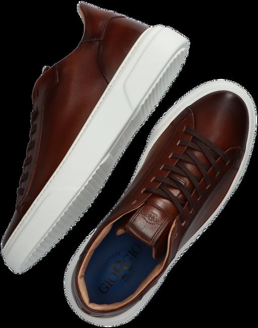 Cognacfarbene GIORGIO Sneaker low 980116  - large
