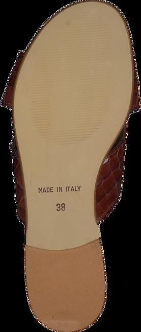 Cognacfarbene SCAPA Pantolette 21/19248CR  - large