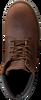 Braune PANAMA JACK Ankle Boots PANAMA HEREN - small