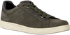 Grüne BJORN BORG Sneaker T306 LOW  - small