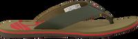 green TIMBERLAND shoe WILD DUNES SYNTH M THO  - medium