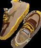 Braune SCOTCH & SODA Sneaker low CELEST  - small