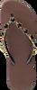 Taupe UZURII Pantolette BLACK STAR - small