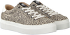 Beige MARUTI Sneaker TED HAIRON LEATHER - small