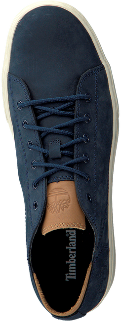 TIMBERLAND SNEAKERS ADV 2.0 CUPSOLE MODERN OX - large