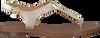 Goldfarbene MICHAEL KORS Sandalen MK PLATE THONG - small