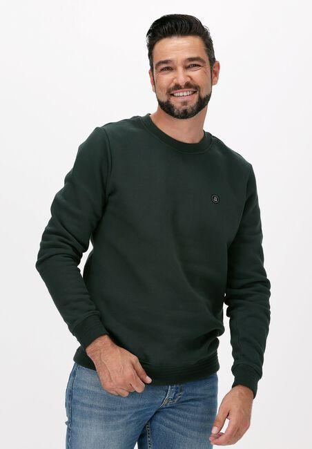 Dunkelgrün ANERKJENDT Sweater AKALLEN ORGANIC CREW - large