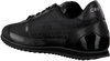 Schwarze CRUYFF CLASSICS Sneaker low MONTANYA  - small
