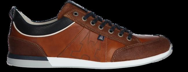 Cognacfarbene GAASTRA Sneaker low BAYLINE  - large