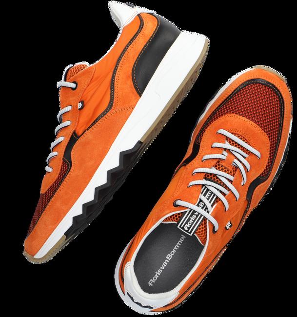 Orangene FLORIS VAN BOMMEL Sneaker low 16392  - large