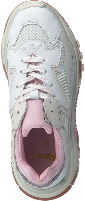 Rosane ASH Sneaker ADDICT  - large