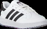 Weiße ADIDAS Sneaker low TEAM COURT C  - medium