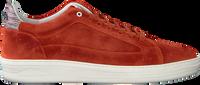 Rote FLORIS VAN BOMMEL Sneaker low 13265  - medium