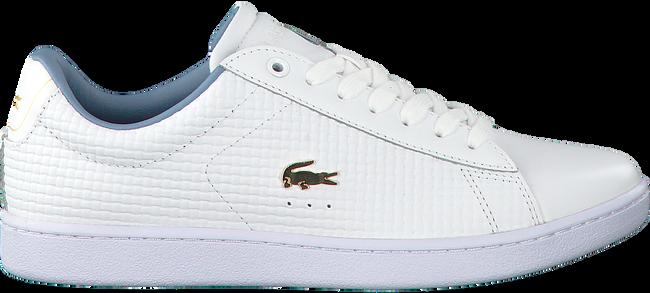 Weiße LACOSTE Sneaker CARNABY EVO DAMES - large