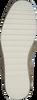 Weiße VERBENAS Espadrilles NOA NUCLEO  - small