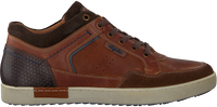 Braune AUSTRALIAN Sneaker low ANTRIM  - medium