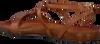 Braune FRED DE LA BRETONIERE Espadrilles 170010065  - small