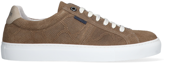 Graue VAN LIER Sneaker low NOVARA  - large
