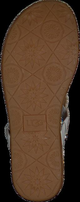 white UGG shoe AYDEN II  - large