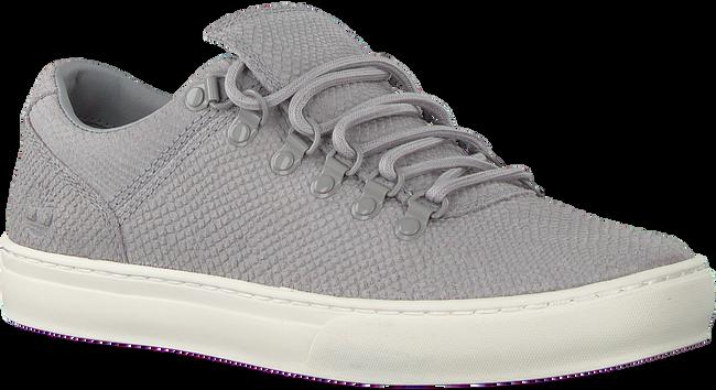 Graue TIMBERLAND Sneaker low ADV 2.0 CUPSOLE ALPINE OX  - large