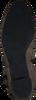 Taupe HASSIA Stiefeletten SIENA  - small