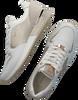 Weiße MEXX Sneaker low FLEUR  - small