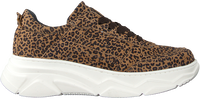 Braune HIP Sneaker H1224  - medium
