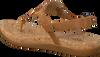 brown UGG shoe AYDEN II  - small
