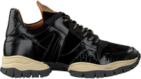 Schwarze VIA VAI Sneaker low ALISHA COUNT  - medium