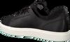 Schwarze TIMBERLAND Sneaker AMHERST TRAINER SNEAKER - small