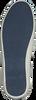 Blaue GANT Sneaker NEW HAVEN - small