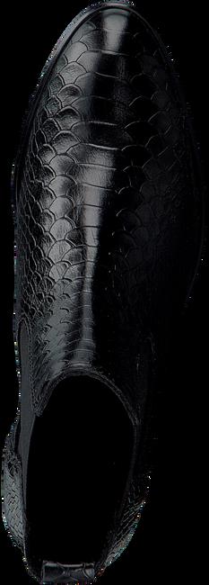 Schwarze NOTRE-V Chelsea Boots 567 001FY  - large