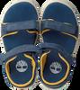 Blaue TIMBERLAND Sandalen NUBBLE L/F STRAP SANDAL  - small